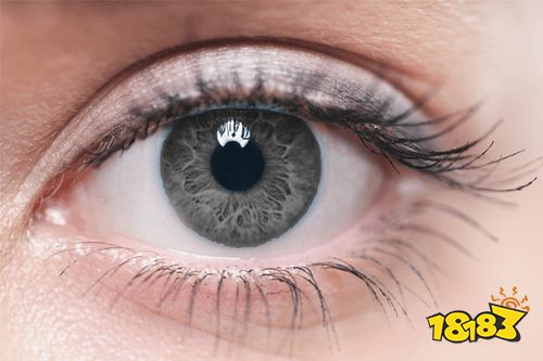 【博狗新闻】护眼app 护眼app哪个好 2021好用的护眼APP一览 策略手机网游