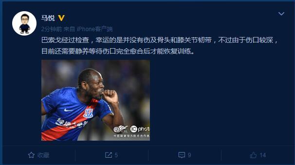【博狗体育】申花新闻官:巴索戈未伤及骨头和膝关节韧带 需静养