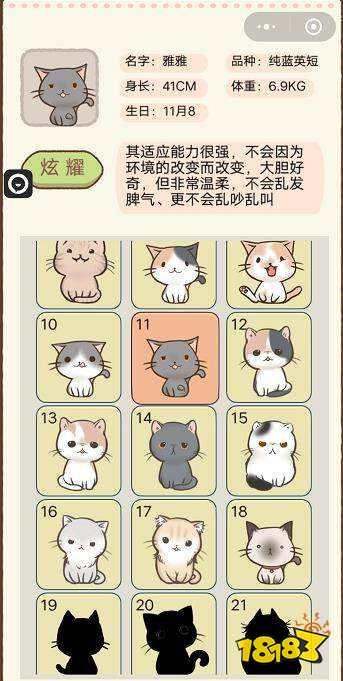 【博狗新闻】猫的品种 我要猫咪第11-15级猫咪品种 名字 属性介绍[多图] 热门网络游戏